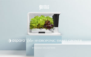 aspara nature smart hydroponic grower on blue stand