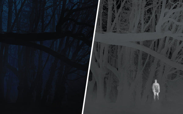 image split in half with left side in darkness the right side showing white image of man in forest