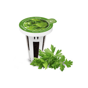 PerfectPrime Parsley seed capsules