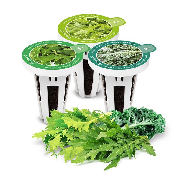AS9003 Salad Special (8 Capsules) - perfect-prime-technology
