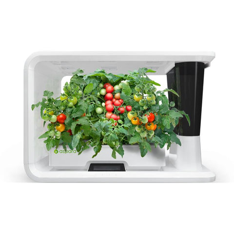 AS1001WH aspara™ Nature Hydroponic Smart Grower - perfect-prime-technology