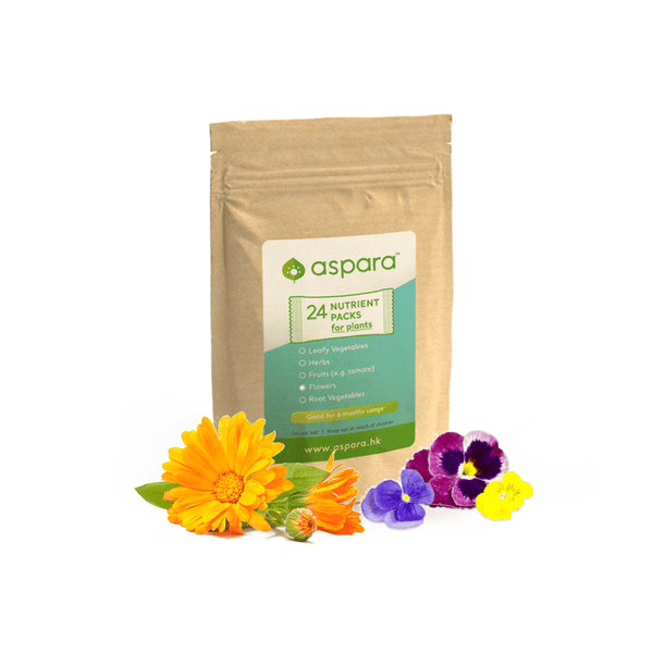 nutrient packs for flowers