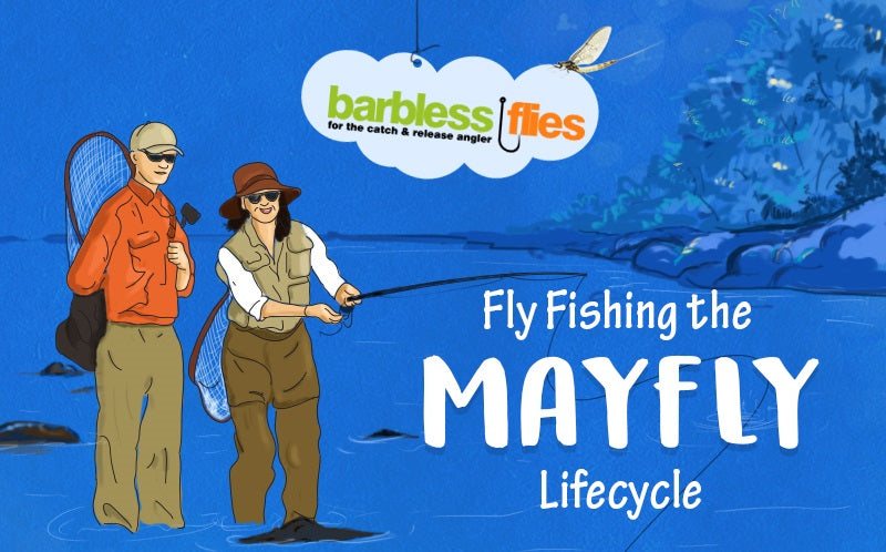 Fly Fishing the Mayfly Lifecycle