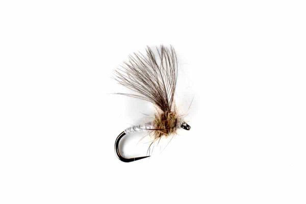 Czech CdC Emerger Selection