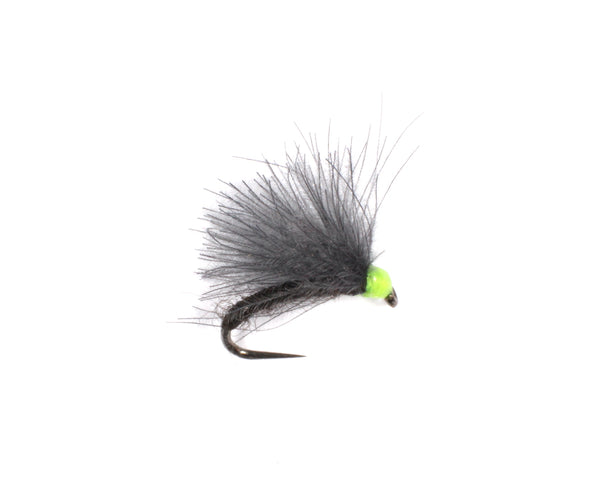 CdC Olive F-Fly - Dry Selection