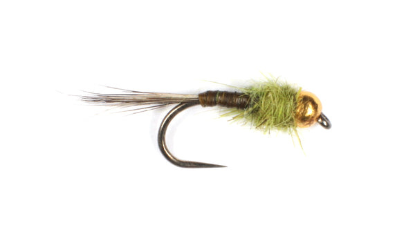 Olive Quill Tungsten Nymph