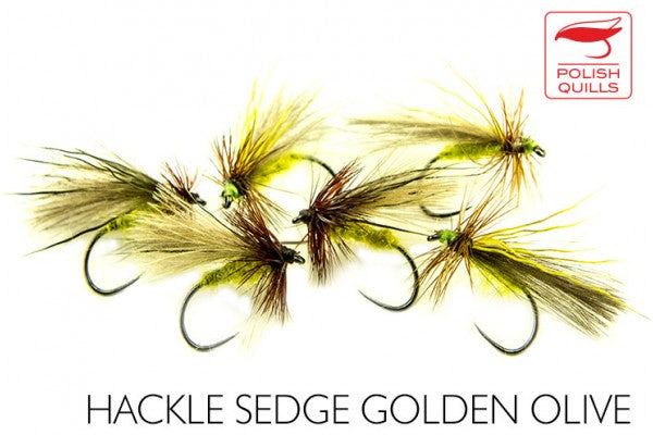 Hackled Sedge