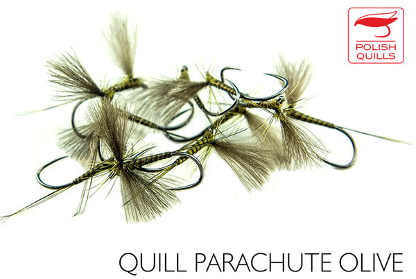 Olive Quill - Parachute