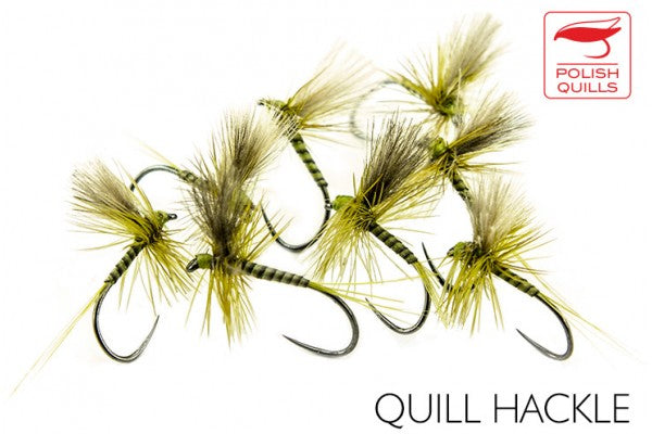 Quill Hackle
