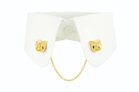 Owl Collar Clip - Gold