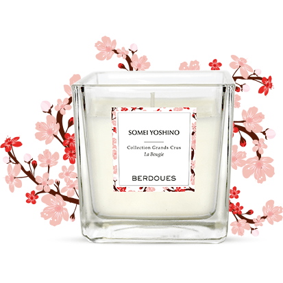 Berdoues Somei Yoshino Candle 180g