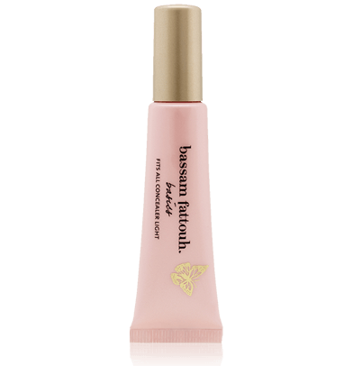 Bassam Fattouh  Concealer Fits All