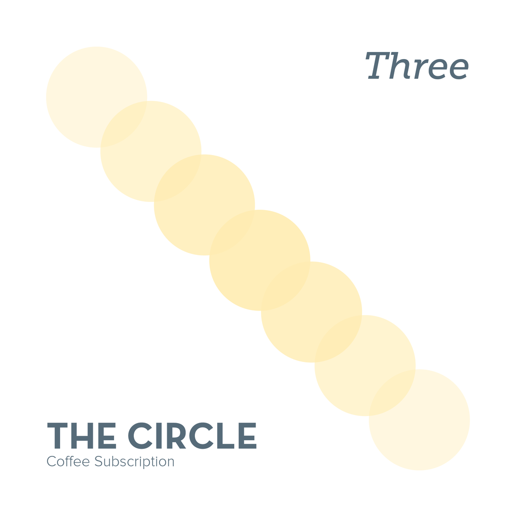 The Circle - Three