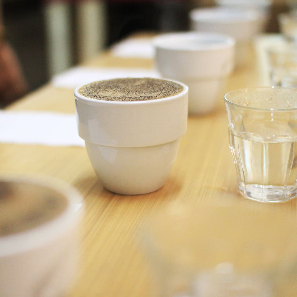 Tasting Specialty Coffee