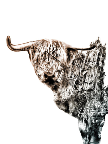 """Cozener Highland Cow"""