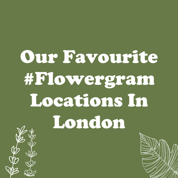 Our Favourite #Flowergam Locations In London -  The Postabloom Instagram Guide To London