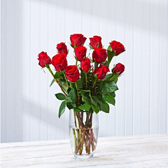 12 red roses postabloom