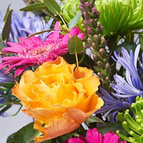 Starburst Flower Delivery - Orange Roses & Pink Germini - Hand-tied Bouquets - Postabloom Flower delivery app