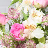 Close up Sparkle - letterbox bouquet of flowers - pink roses, white alstroemeria, pink astrantia