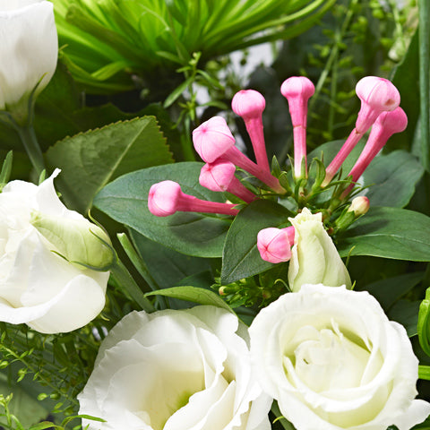 Close up of Cloud 9 in a vase - letterbox bouquet of flowers - white roses, green chrysanthemums, pink lisianthus