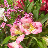 Thoughtful Letterbox Flowers - Alstroemeria & Snapdragon - Letterbox Bouquets - Postabloom Flower delivery app