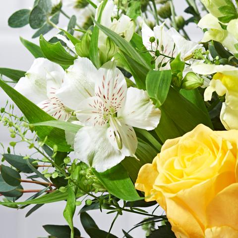 Rise & Shine Flower Delivery - Yellow Roses & Germini - Hand-tied Bouquets - Postabloom Flower delivery app