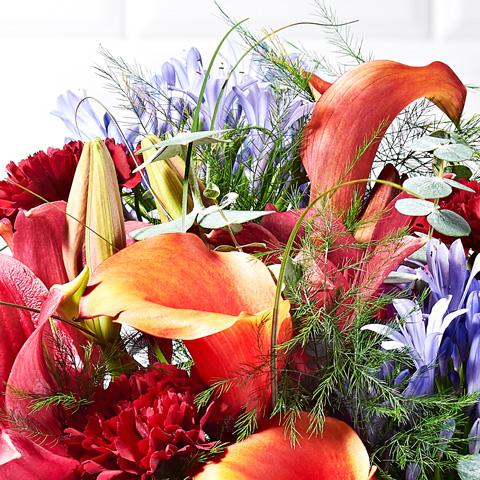 Close up of Sangria in a vase - luxury bouquet of flowers - red lilies, orange tulips
