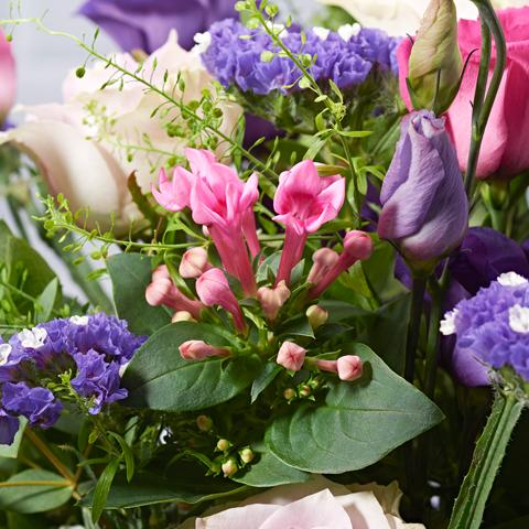 Close ups of Secret Garden - luxury bouquet of flowers - lilac roses and pink lisianthus