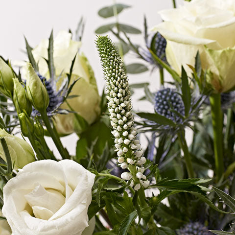 Close up of White Christmas - letterbox bouquet of flowers - white roses, white lilies, white lisianthus