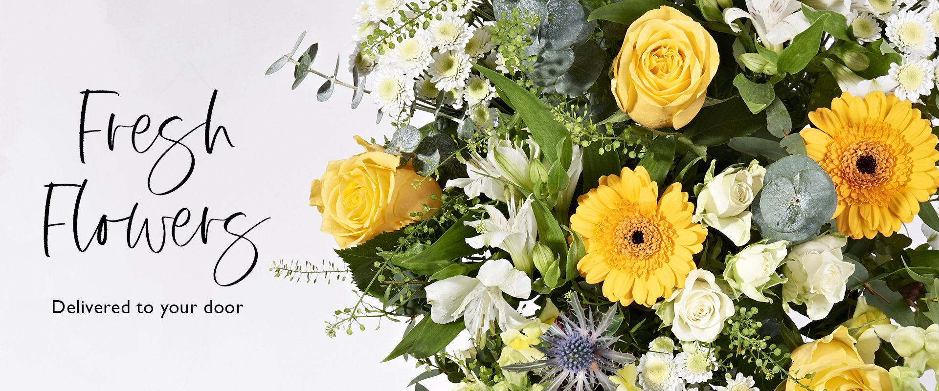Send fresh letterbox & hand-tied flowers with Postabloom