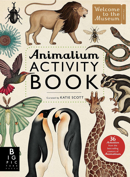 BOOK - ANIMALIUM ACTIVITY BOOK by Katie Scott