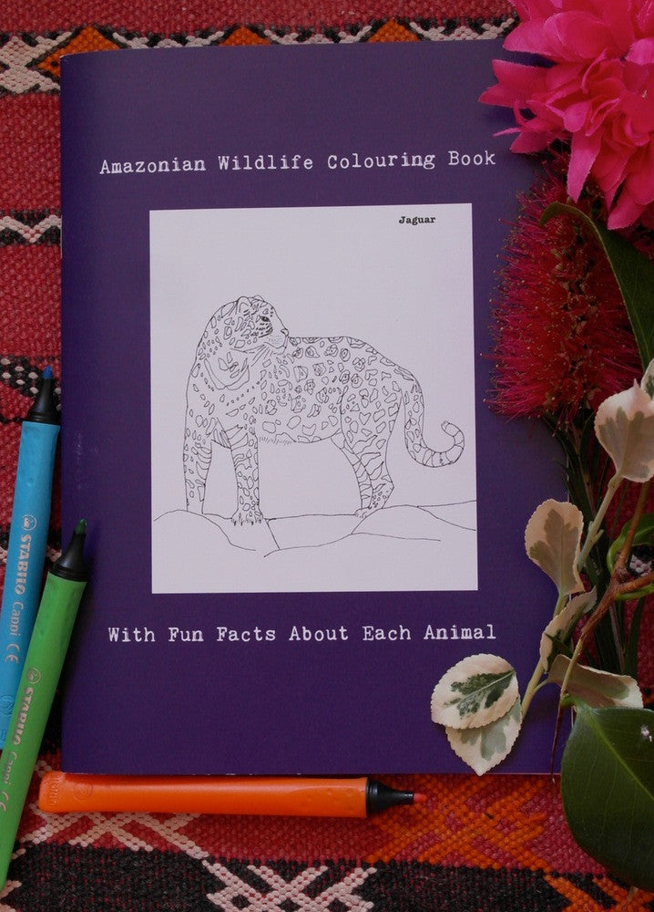SARAH LOVELL ART Amazonian Wildlife Hand Illustrated Colouring Book