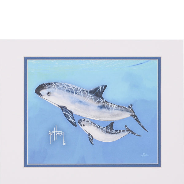 SeaWorld and Guy Harvey Exclusive Vaquita Print