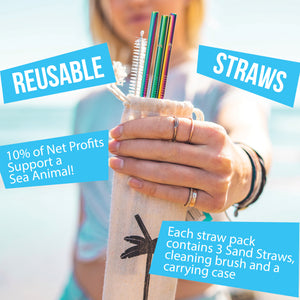 Whale Straws with Brush & Case - 3 Pack
