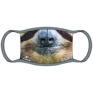 SeaWorld and Busch Gardens Sloth Face Mask