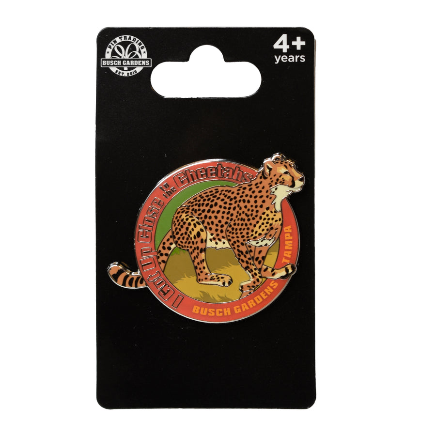 Cheetahs Up Close Pin