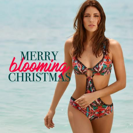 Merry Blooming Christmas