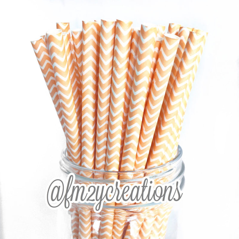 CHEVRON PAPER STRAWS: Peach - From Me 2 You Creations
