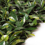 Artificial European Laurel Greenery Hedge