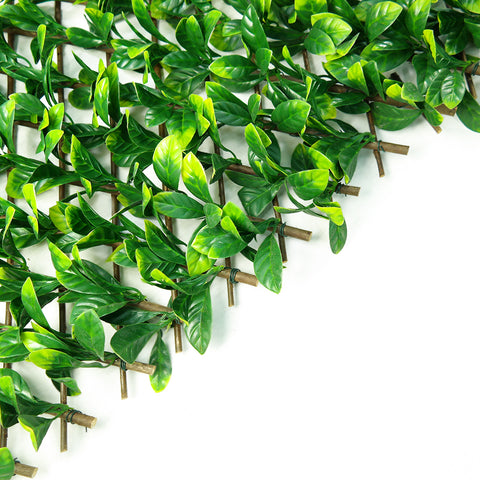 Artificial Ficus Trellis Greenery Hedge