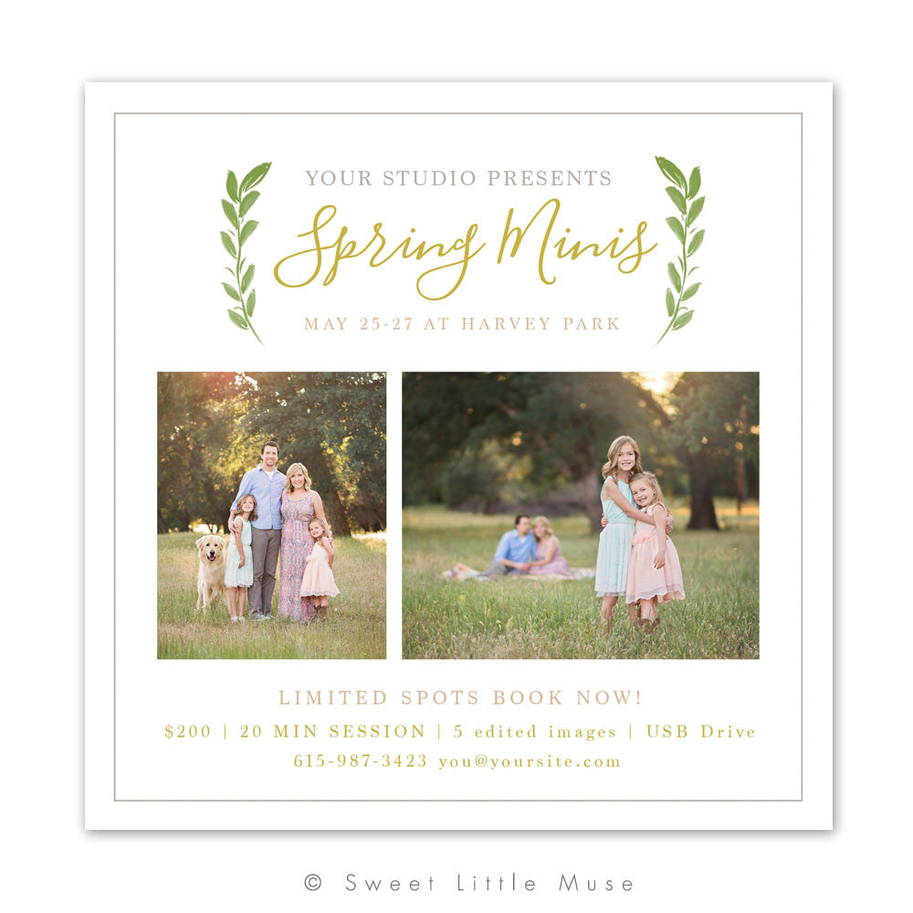 Spring Mini Session Template - Clean Leaves Design