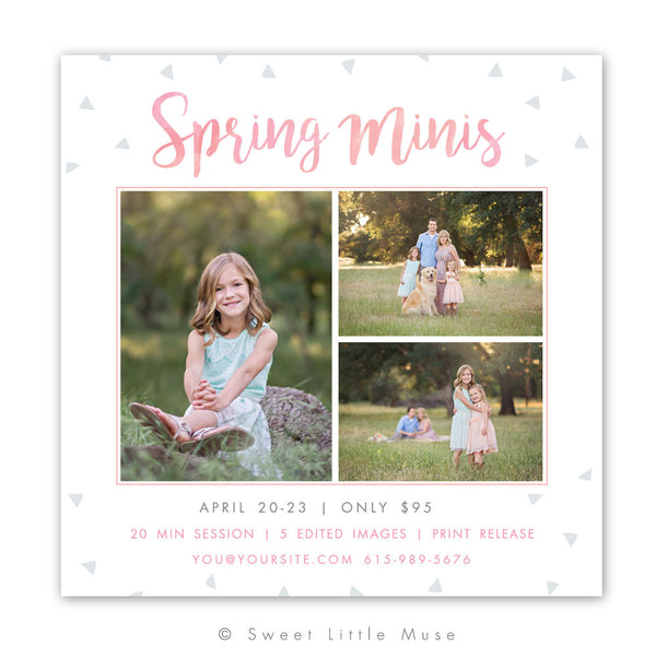 Spring Mini Session Template -Triangles