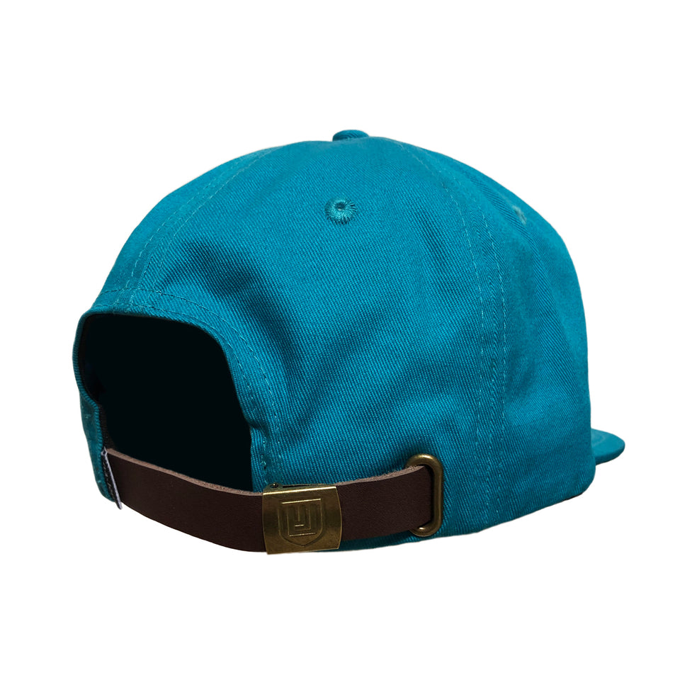 Dove 6 Panel Low Profile Hat Teal