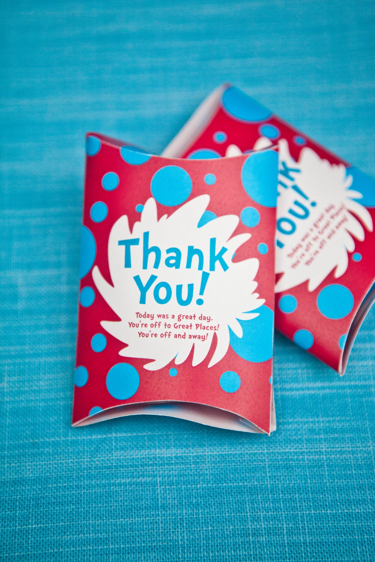 Dr Seuss Kids Party Favors