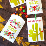 Fiesta Favor Bags - Flowers and cactus