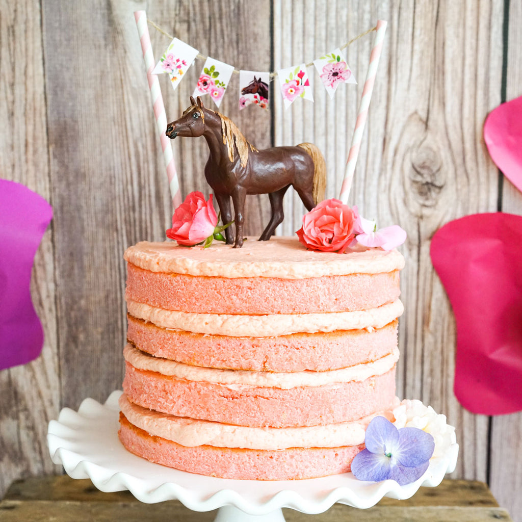 Horse Birthday Party Mini Cake Bunting