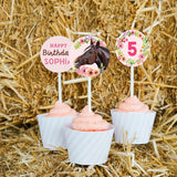 Horse Party Cupcake Toppers and Wrappers