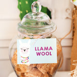 Llama Party Decorations