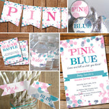 Pink Or Blue Gender Reveal Party Decorations Set