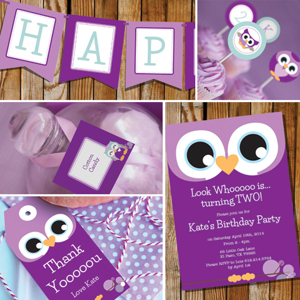 Purple Owl Birthday Party Decorations For A Girl